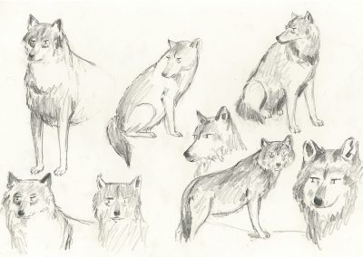 Website Sketchbook Wolves 2-