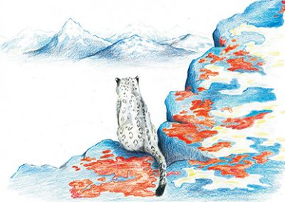 Website Snow Leopard Outlook
