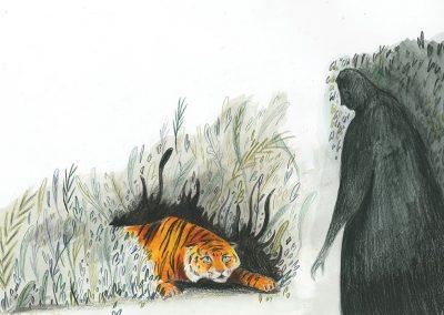 Website Tiger